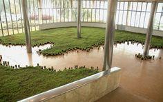 A paisagem dentro do museu