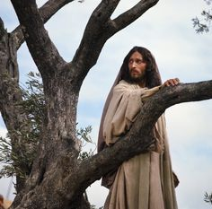 Wow! Robert Powell's portrayal of Jesus Christ. Beautiful photo!