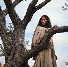 Wow! Robert Powell's portrayal of Jesus Christ. Beautiful photo!