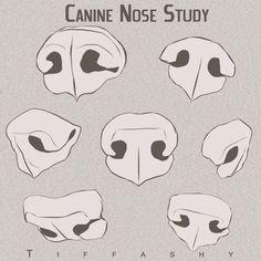 Image result for wolf snarling nose