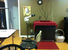 A Comfy Pet Grooming Salon in Millsboro, DE