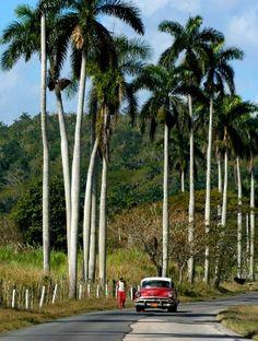 The Long Road to Havana, Cuba Varadero, Vinales, Beautiful Islands, Beautiful Places, Places Around The World, Around The Worlds, Cuba Island, Cuba Itinerary, Vintage Cuba