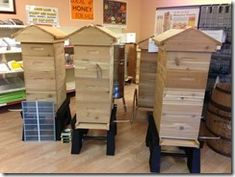 Basic Bee Keeping Blog