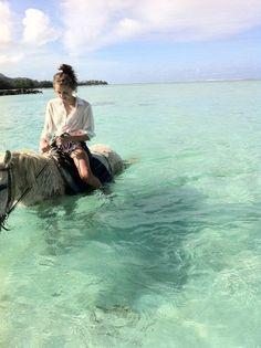 Ocean horseback ride in the Bahamas