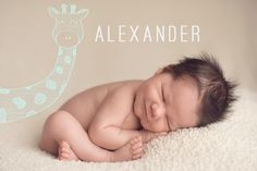 Baby & Newborn Photo Overlays for Professional Portrait Photographers Cute Baby Pictures, Newborn Pictures, Baby Photos, Kid Photos, Newborn Pics, Family Photos, Cute Kids, Cute Babies, Newborn Photography