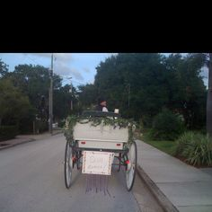 HorseSisters.org Carriage Weddings In Cocoa Village Florida since 2000.
