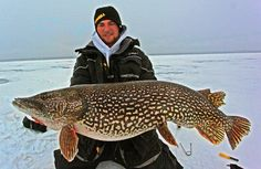 How is this for ice fishing? Big Central Minnesota Pike.