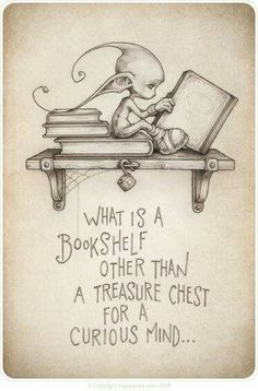 Exactly! A bookshelf is where knowledge is kept and curiosity is satisfied.