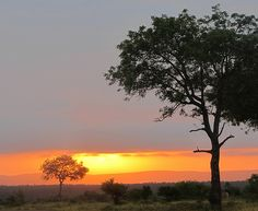 South Africa: sunset in Hluhluwe
