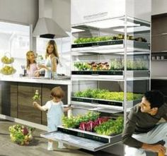 A realistic future view of growing your own vegetables indoors: Kitchen Nano Garden if we hit it big and build our house, I'll add this awesome garden into the kitchen for sure!