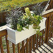Best planter boxes - get the deeper ones and the self-irrigation system.  Place three on the deck railing.