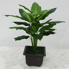 Cheap decorative foliage plants, Buy Quality plant figure directly from China plant rock Suppliers: Large Evergreen Artificial Plant 25 Leaves Lifelike Bush Potted Plants Plastic Green Tree Home Garden Office Decoration Small Artificial Plants, Fake Plants, Artificial Flowers, Indoor Plants, Plant Wall, Plant Decor, Potted Trees, Potted Plants, Foliage Plants