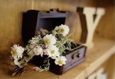 yuchi-chiさんが投稿した画像です。他のyuchi-chiさんの画像も見てませんか?|おすすめの観葉植物や花の名前、ガーデニング雑貨が見つかる!🍀GreenSnap(グリーンスナップ)