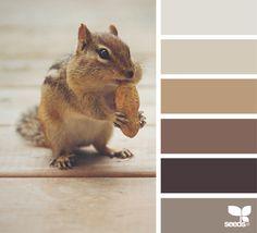 { creature tones } - https://www.design-seeds.com/seasons/autumn/creature-tones7