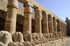 Overnight trip to Luxor from Marsa Alam || Enjoy a private 2 days trip to Luxor from Marsa Alam where you will visit Luxor temple, Karnak temples then overnight at 5* hotel. Next day tour to Valley of the Kings, queen Hatshepsut temple and Colossi of Memnon, then back to Marsa Alam. Whatsapp+201069408877 Email: Reservation@toursfromhurghada.com Starting From : 199 $ #Hurghada_Excursions #ElGouna_Excursions #Marsa_Alam_Excursions #Makadi_Excursions #Cairo #Pyramids #Luxor #Abu_Simble #Egypt