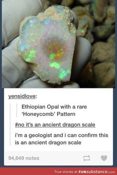 Ethiopian Opal with a rare 'Honeycomb' Pattern it's an ancient dragon scale i'm a geologist and i can confirm this is an ancient dragon scale - iFunny :) Memes Humor, Funny Memes, Hilarious, My Tumblr, Tumblr Funny, Pokemon Real, Doug Funnie, Excuse Moi, Dragon Tales