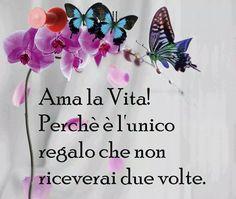Hobbies For Women Refferal: 5218055814 Italian Phrases, Italian Quotes, Hobbies For Women, Great Hobbies, Italian Language, Learning Italian, Carpe Diem, Favorite Quotes, Happy Birthday
