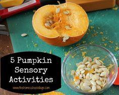 5 Pumpkin Sensory Activities