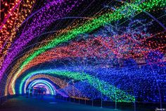 At the Yomiuriland's Jewellumination, everywhere in the park is illuminated with 6,000,000 colorful light making it look like millions of jewels shining in the dark creating a breathtaking view.
