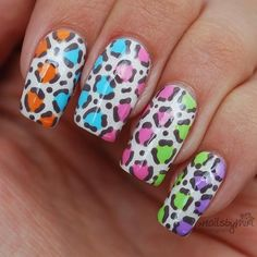 Colorful Leopard Print