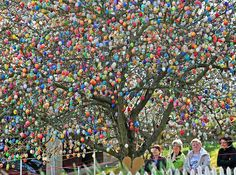 The German Volker Kraft from Saalfeld decorates his tree each year with 10.000 easter eggs