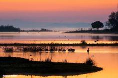 MiEspacioNatural  Amanecer en Doñana.