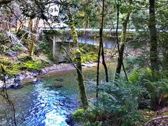 February 2013 Winchuck River Campground Brookings Oregon