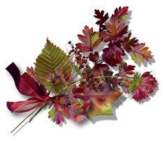Podzimní dekorace 1 | Tvoření Fall Decor, Autumn, Floral, Plants, Blog, Fall, Blogging, Plant, Flowers