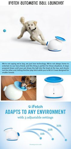 Simple Ideas That Are Borderline Genius (Dog Edition) – 10 Pics - Tap the pin for the most adorable pawtastic fur baby apparel! You'll love the dog clothes and cat clothes!