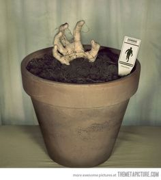 This would actually be a neat idea for lawn decor. Fake hand in a pot with a zombie tag.