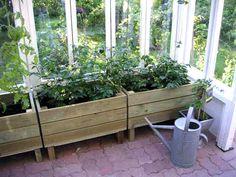 pieni kasvihuone vanhoista ikkunoista - Google-haku