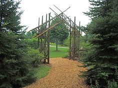 trellis from found sticks and driftwood