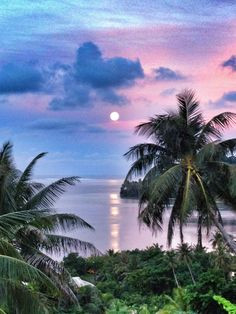 Moonrise on Raiatea. For more information visit www.pgcruises.com or call 020 7399 7691