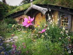 Hobbit Hole, The Shire