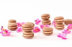 Hazelnut chocolate macarons with template