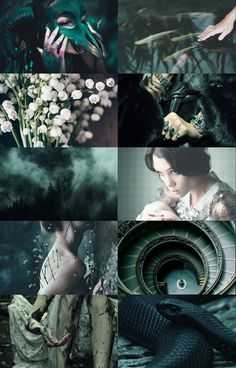 """slytherin aesthetic; mermaid""""or perhaps in slytherinyou'll make your real friends,those cunning folks use any meansto achieve their ends.""""gryffindor 