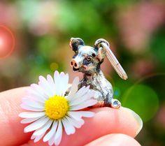 Schöne Schmuck Geschenkideen findest du bei uns im Online-Shop Animals, Wedding Gold, Little Pigs, Signet Ring, Nice Jewelry, Silver, Nature, Animaux, Animal