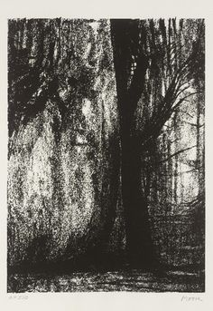 Henry Moore (Brit. 1898-1986), The Forest, 1973, lithograph on paper, 29,1 x 21cm, London, Tate Modern Henry Moore Drawings, Henry Moore Sculptures, Natural Forms, Au Natural, William Blake, Texture Art, White Image, Tree Art, Painting & Drawing