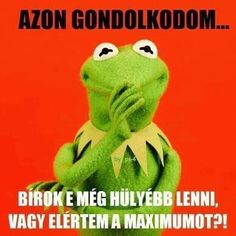 Kermit, Memes, Sentences, Dinosaur Stuffed Animal, Lol, Education, Words, Funny, Quotes