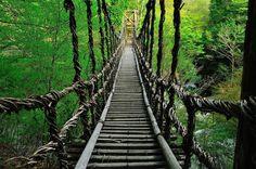 4.祖谷のかずら橋 【徳島県】  かつては深山渓谷地帯の唯一の交通施設であったかずら橋。シラクチカズラで作られた橋なのですが、長さ45m、幅2mの巨大な橋です。毎晩19:00~21:00まではライトアップもしているようで、渓谷の上にかかった橋が幻想的に光りますよ♪