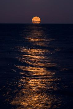 ✯ Lake Michigan Moonrise (This is one of my favorite beaches, second only to Destin, FL)