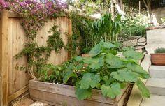"""A horta com sistema de """"wicking beds"""" é um modo de cultivo que permite a produção de hortaliças e ornamentais em pequenos espaços, sobre solos compactados ou lajes de terraços. Vantagem desta horta por irrigação capilar - o..."""