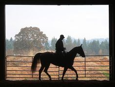 Horse and Rider by Molalla River Cowboy