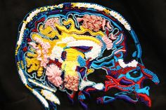 Amazing embroidery of brain, @Amy Langdale and perhaps MkB too?