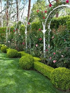 Arch Trellis Ideas Arch Trellis Ideas Graceful garden arch trellises stand as sculptural structures that bring beauty and function to landscapes of all sizes. Consider a curved trellis for your backyard, patio, garden, or walkway. Small Backyard Gardens, Backyard Landscaping, Outdoor Gardens, Backyard Patio, Backyard Plants, Landscaping Ideas, Backyard Privacy, Formal Gardens, Garden Privacy