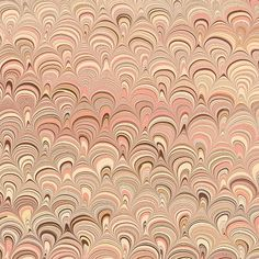 Crepaldi Marbled Paper - Coral & Beige Peacock (1/2 sheet) - $13.79 for 18x26in