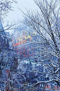 Chateau Frontenac and snow-covered trees at dawn, Quebec City, Quebec