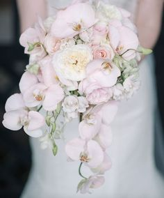 The bride will carry a cascading bouquet of cream hydrangeas, white dendrobium orchids, blush Kiera garden roses, ivory spray roses, Patience garden roses, Sahara roses, grey duty miller, and cascading blush phalaenopsis orchids wrapped in ivory ribbon
