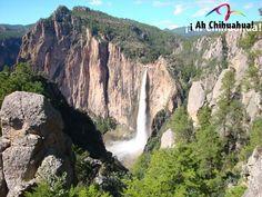 TURISMO EN BARRANCAS DEL COBRE. La Cascada de Basaseachi, fue elevada al rango de parque nacional para protección de este ecosistema, abarcando una superficie de 625.53 hectáreas. Este gran paisaje de bosques, barrancas y arroyos es un lugar que no puede dejar de visitar en su próxima visita al hermoso estado de Chihuahua. #turismoenchihuahua