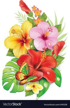 Draw hawaiian flowers tropical flowers tropical flower tattoos flowers hibiscus flowers exotic flowers draw hawaiian flowers step by step Hawaiian Flower Drawing, Hibiscus Drawing, Hawaiian Flowers, Hibiscus Flowers, Exotic Flowers, Tropical Flowers, Flower Art, Beautiful Flowers, Draw Flowers